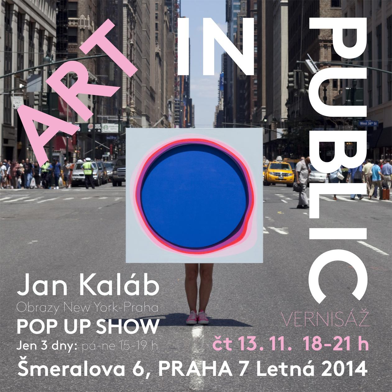 Jan Kaláb - ART IN PUBLIC, NYC 2014