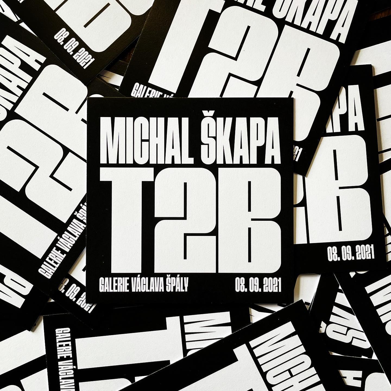 Michal Škapa - T2B