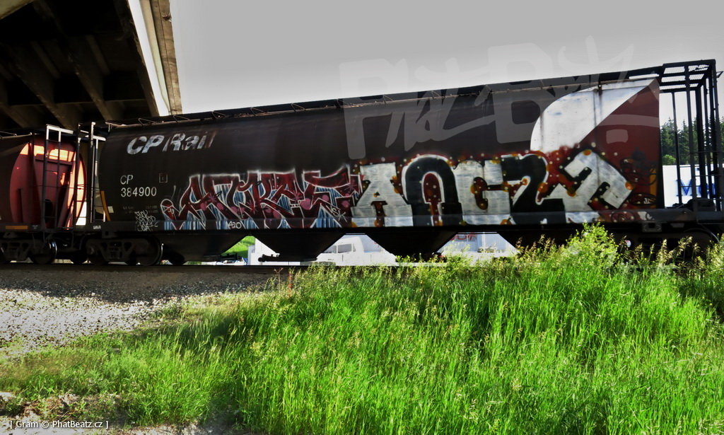1407_KanadaTrains_091