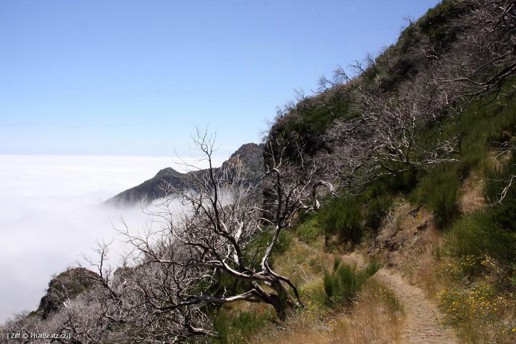 1407_Madeira_046