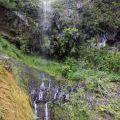 1407_Madeira_115