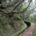 1407_Madeira_116