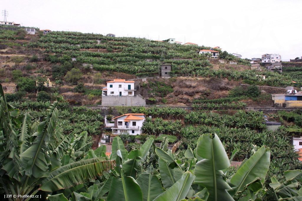1407_Madeira_160