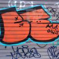 1805-07_Bronx_TUPS_002