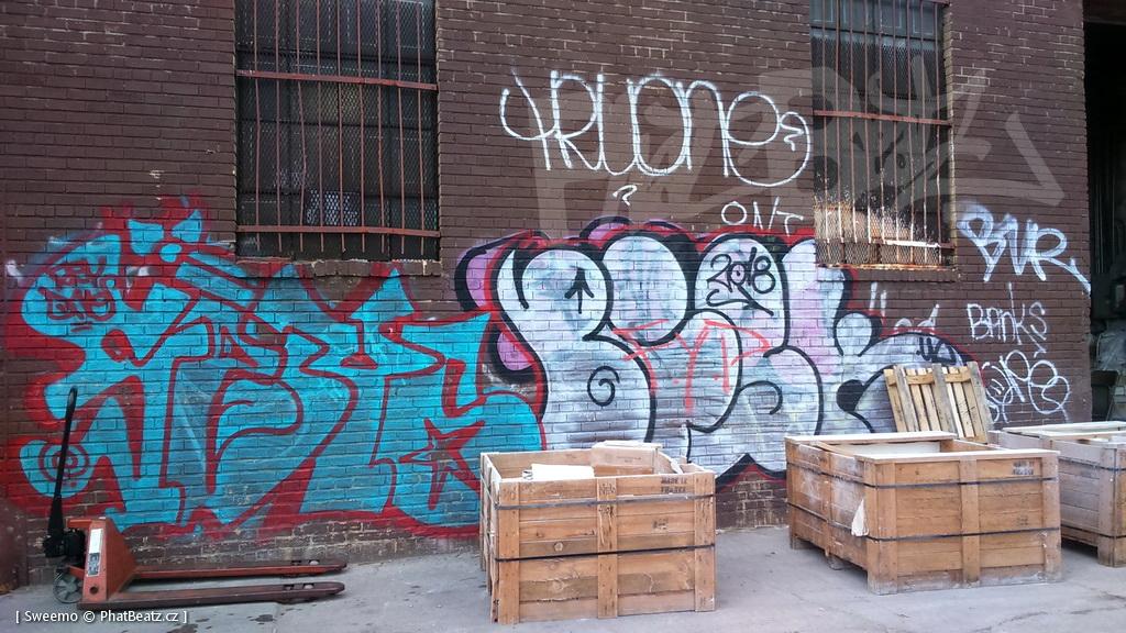 1805-07_Bronx_TUPS_020