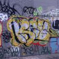 1805-07_Bronx_TUPS_035