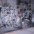1805-07_Bronx_TUPS_039