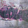 1805-07_Bronx_TUPS_043