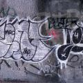 1805-07_Bronx_TUPS_046