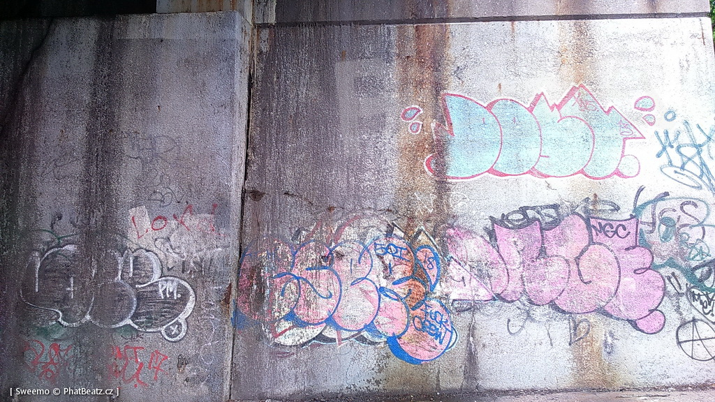 1805-07_Bronx_TUPS_047