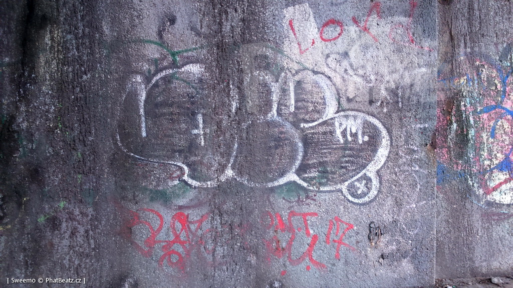 1805-07_Bronx_TUPS_048