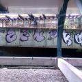 1805-07_Bronx_TUPS_055