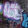 1805-07_Bronx_TUPS_081
