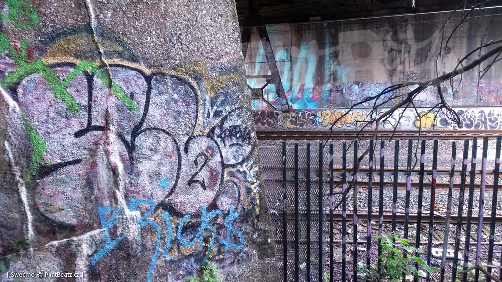 1805-07_Bronx_TUPS_083