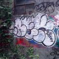 1805-07_Bronx_TUPS_084