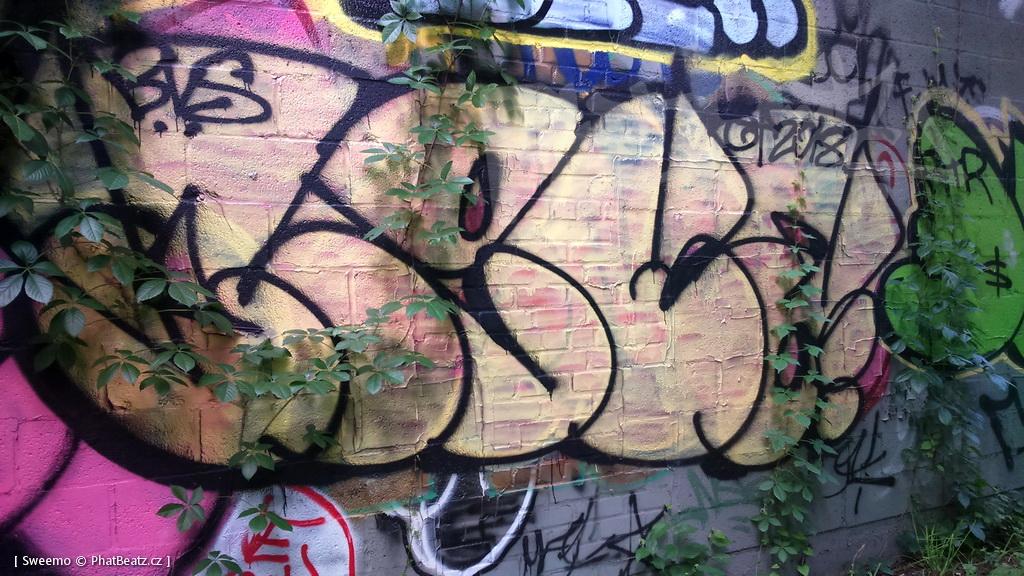 1805-07_Bronx_TUPS_088