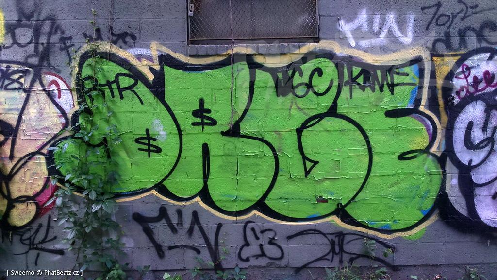 1805-07_Bronx_TUPS_090