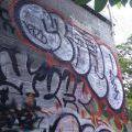 1805-07_Bronx_TUPS_094