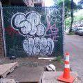 1805-07_Bronx_TUPS_098