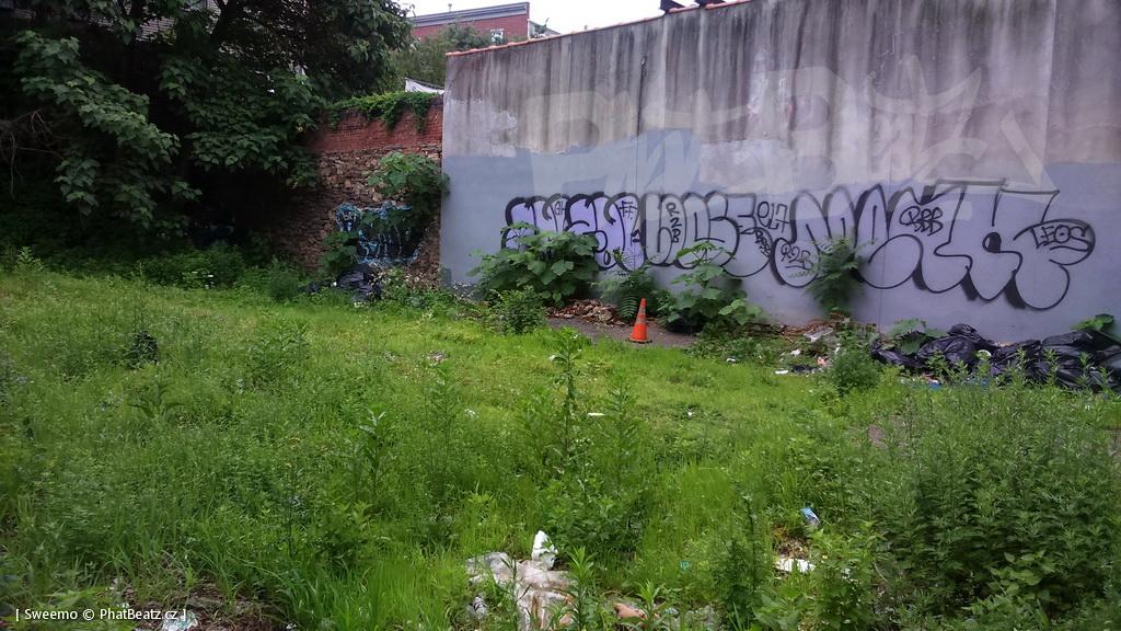 1805-07_Bronx_TUPS_126