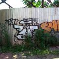 1805-07_Bronx_TUPS_136