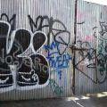1805-07_Bronx_TUPS_138