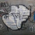1805-07_Bronx_TUPS_182