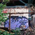 1805-08_NYC_Vehicles_53-25