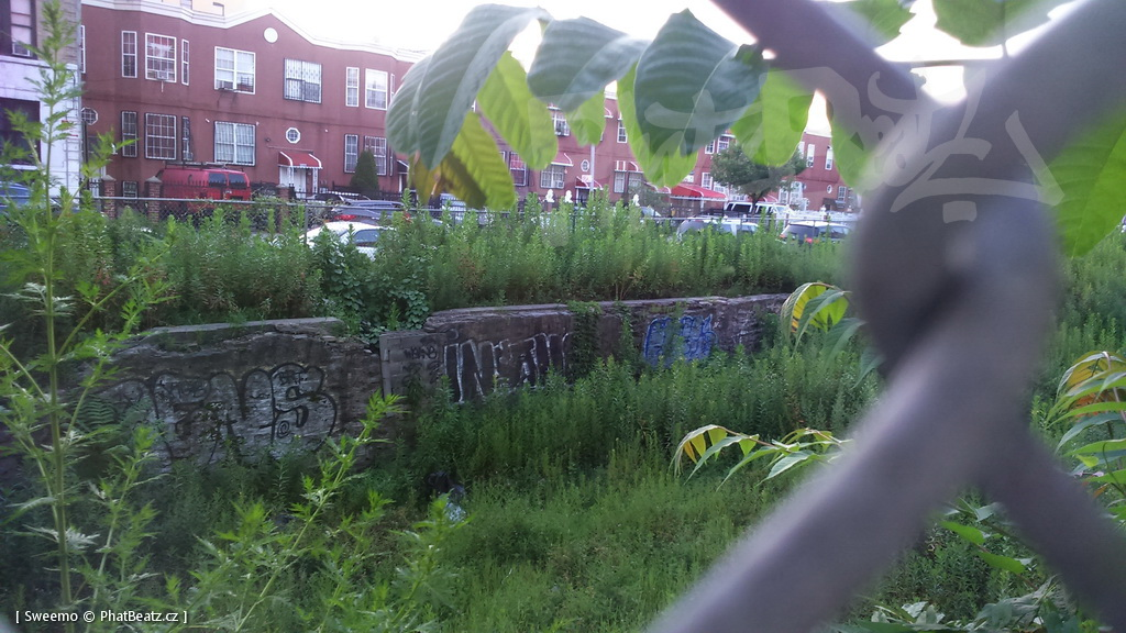 1806_Bronx_STREET_105