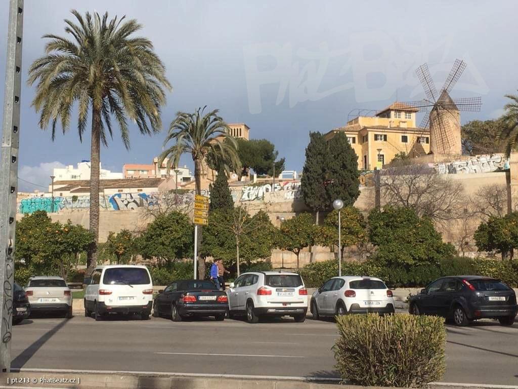 190130_Mallorca_080