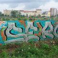 200614_HOL_49