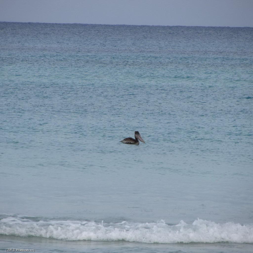 201211_CUBA_184