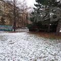 210113_Prosek_11