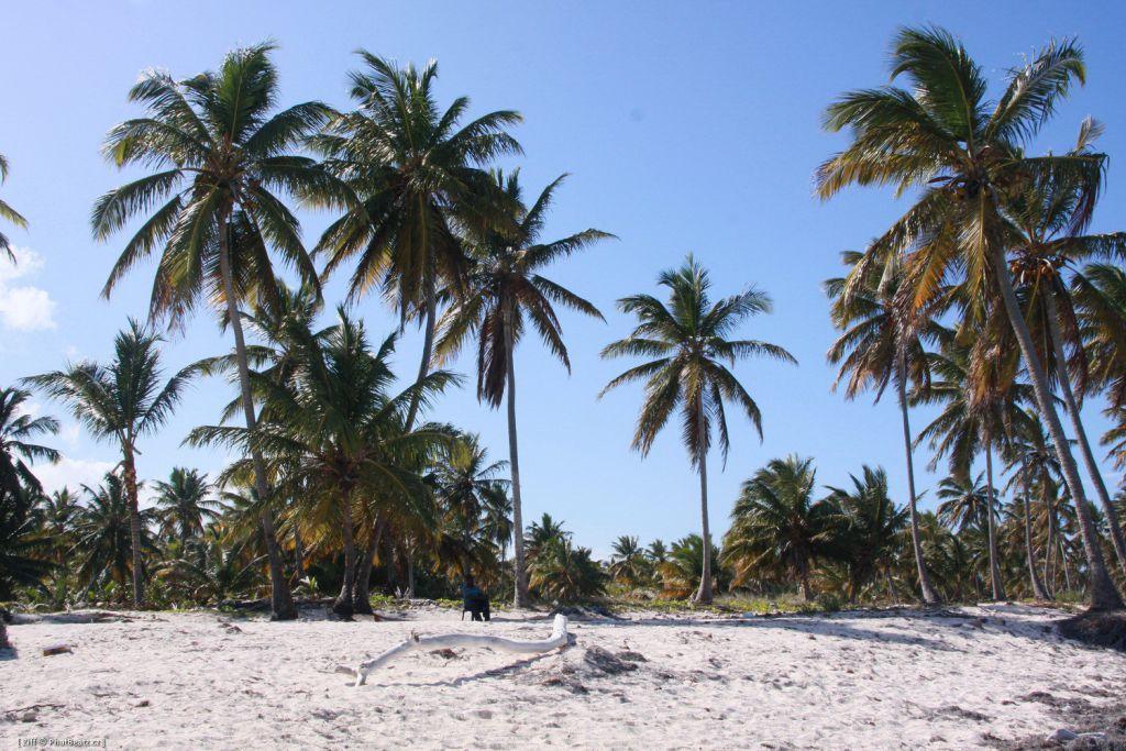 Dominicana2011_013