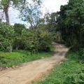 Dominicana2011_074