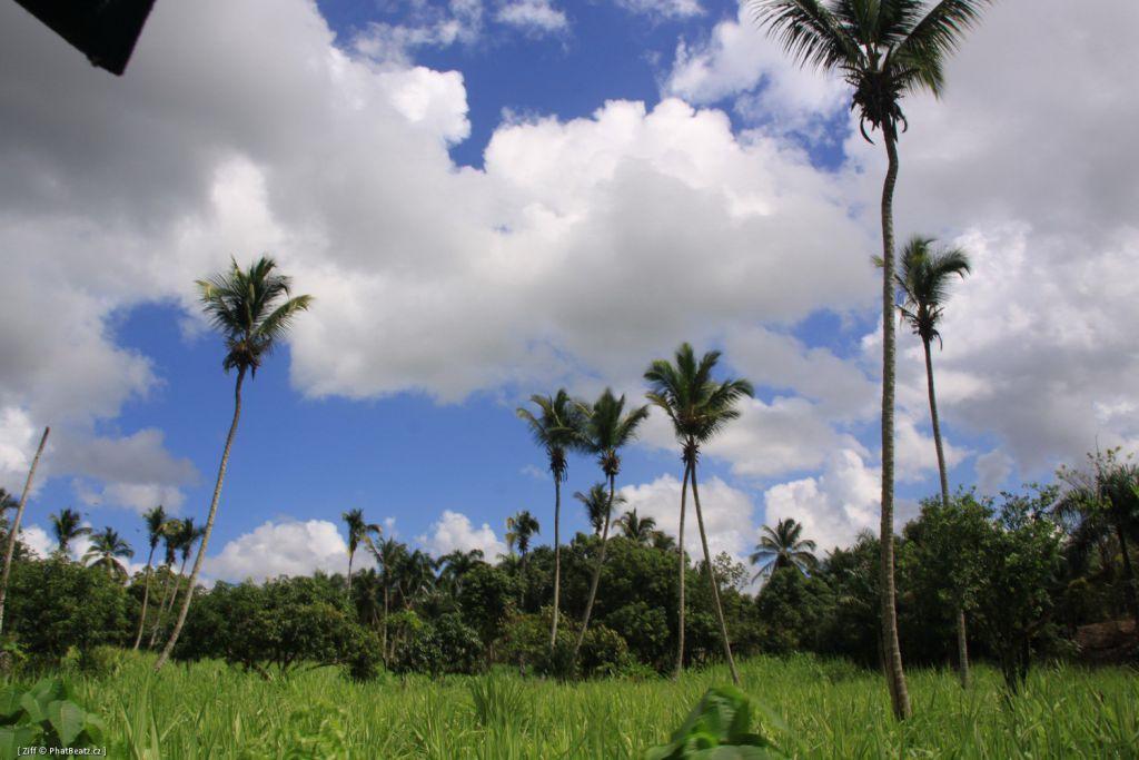 Dominicana2011_096