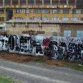 Grafficon-Montana_73