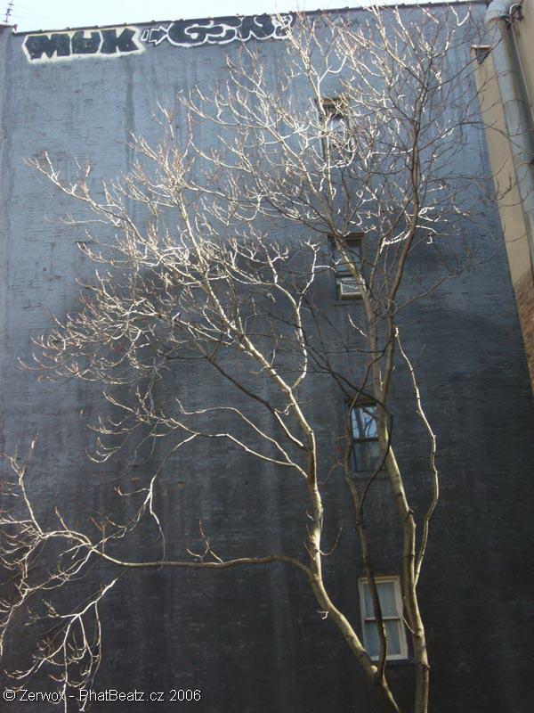 Manhattan_134