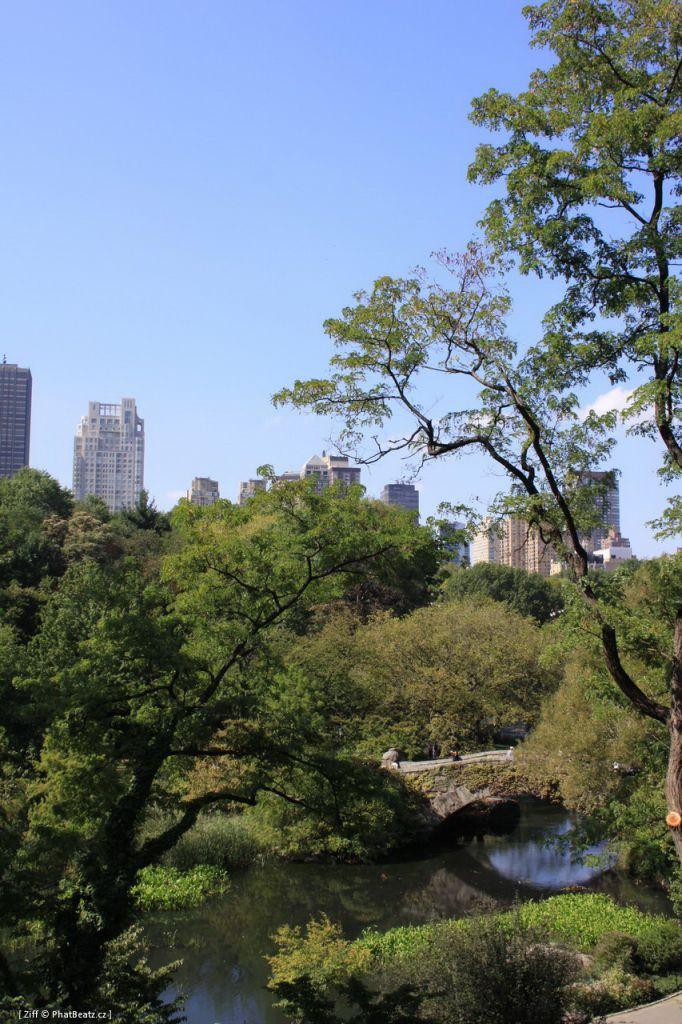 New_York_100