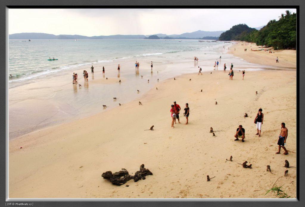 THAILAND2011_024