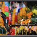 THAILAND2011_043