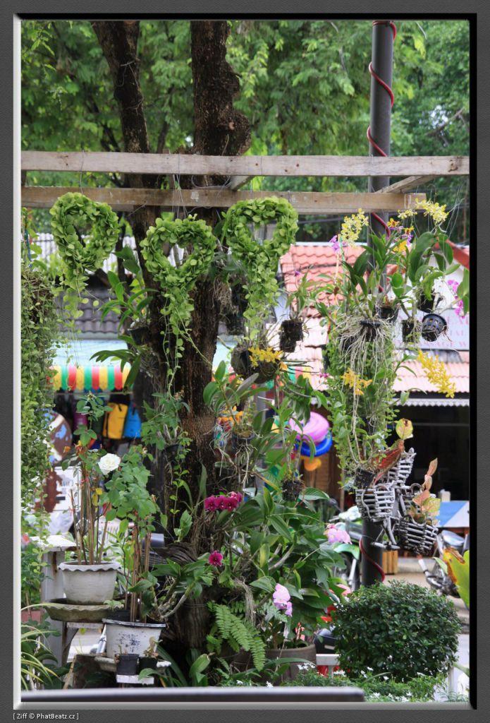 THAILAND2011_116