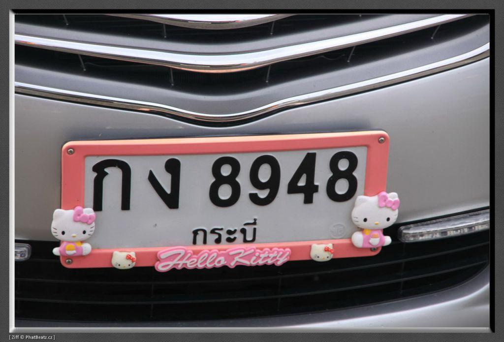 THAILAND2011_126