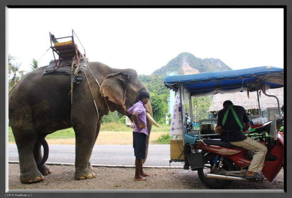 THAILAND2011_156