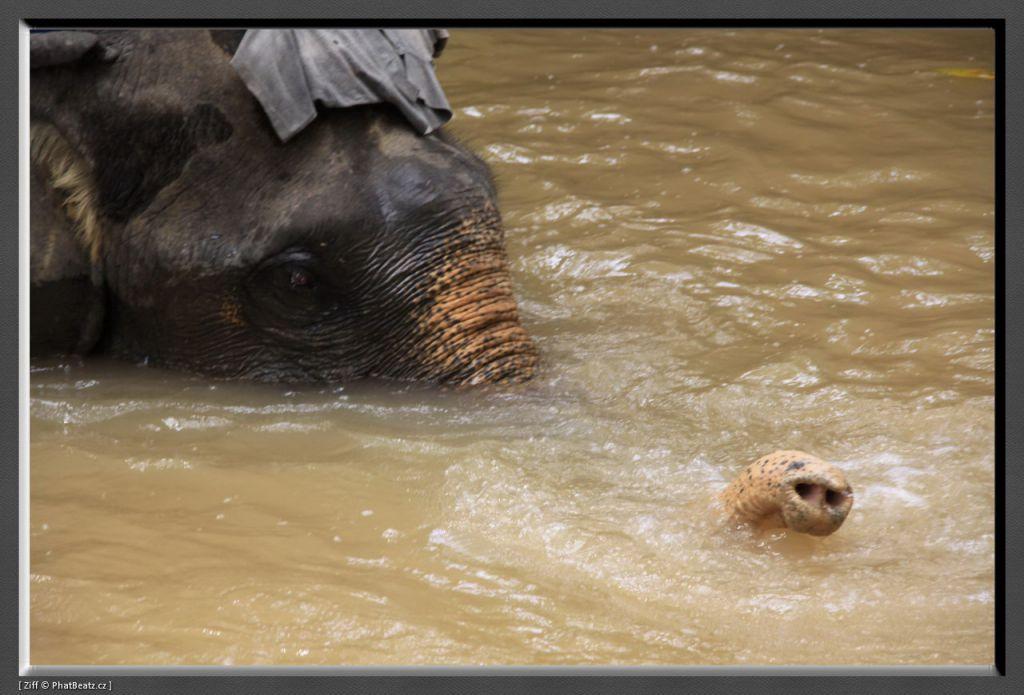 THAILAND2011_157