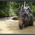 THAILAND2011_158